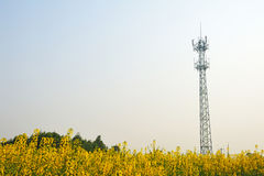 Mobile phone base station Stock Image