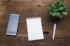 Mobile phone with blank screen. Business ideas concept. Mobile phone with blank screen, notepad with copy space and green plant tree on office desk table top Stock Photography