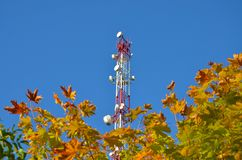 Mobile phone communication radio tv tower, mast, cell microwave antennas and transmitter against the blue sky and trees. Mobile phone communication radio tv stock photo