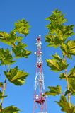Mobile phone communication radio tv tower, mast, cell microwave antennas and transmitter against the blue sky and trees Stock Photos