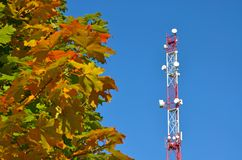 Mobile phone communication radio tv tower, mast, cell microwave antennas and transmitter against the blue sky and trees Royalty Free Stock Photography