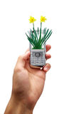 Mobile phone of ecology Stock Photos