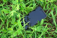 Mobile phone lost in the green grass Royalty Free Stock Image