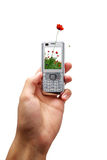 Mobile Phone Of Ecology Royalty Free Stock Photography