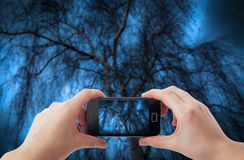 Mobile phone photography Stock Photography