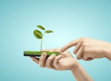 Mobile phone with plant Royalty Free Stock Photos