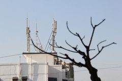 Mobile phones tower radiation affect Plant life Stock Photography