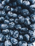 Mobile photo of blueberry background Royalty Free Stock Photos