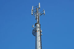 Mobile pole behind tree with blue sky back ground ,technology can coexist the environment Stock Photo