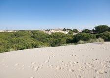 Mobile sand dunes, Doñana, Spain Stock Photos