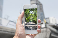 Mobile , smart phone with nature picture and city at the background , nature mobile set 1 royalty free stock photography