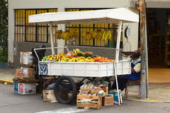 Mobile street vendor. LIMA, PERU - SEPTEMBER 20, 2011: A mobile street vendor selling fruits (mandarin, banana, papaya and avocado) on a cart on September 20 Stock Photos
