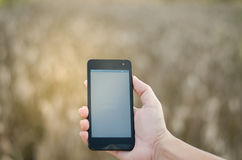 Mobile touch screen phone natural background Stock Images