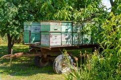 Mobiler Bienenhausanhänger am Wald lizenzfreies stockbild
