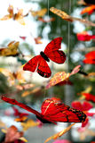 Mobiles della farfalla fotografie stock