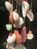 Mobilni Seashells, wiszących ozdób skorupy Obraz Stock