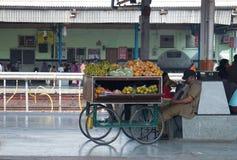 Mobilny owocowy sprzedawca z furą Obraz Stock