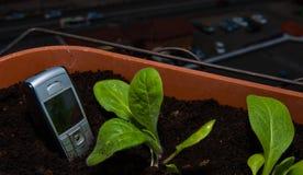 mobiltelefonpinnar ut ur jordningen i en kruka av blommor p? balkongen arkivfoto