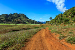Moc Chau plateau with blue sky, mountain and pathway Royalty Free Stock Images