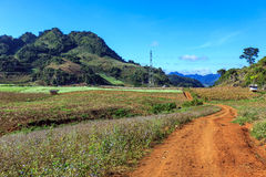 Moc Chau plateau with blue sky, mountain and pathway Royalty Free Stock Photos