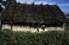 Moca - Equatoriaal Guinea Stock Foto's