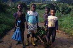 Moca .Equatorial Guinea Royalty Free Stock Image