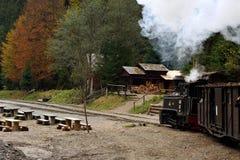 Mocanita sulla valle di Vaser, Maramures, Romania fotografie stock