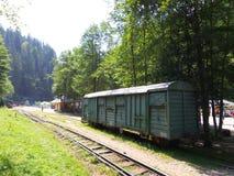 Mocanita - touristic train in Maramures Royalty Free Stock Photo