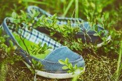 Mocassins dans l'herbe photographie stock