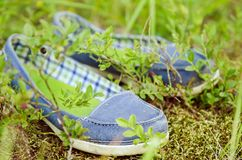 Mocassins dans l'herbe photo libre de droits