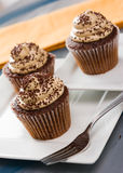 Mocha Cupcakes Royalty Free Stock Photos