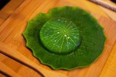 Mochi japonés del agua en plato de la hoja fotografía de archivo libre de regalías