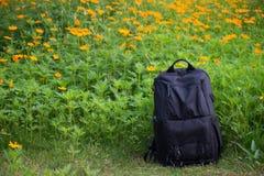 Mochila negra en jardín de flores amarillo Imágenes de archivo libres de regalías