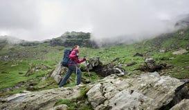 Mochileiro com varas trekking, escaladas da mulher da trouxa de montanhas de Romênia imagem de stock royalty free