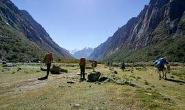 Mochileiros que caminham nas montanhas do BLANCA de Cordilheira nos Andes do Peru com os locals e os asnos que retornam do fotografia de stock royalty free