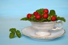 Mock strawberries Stock Photos
