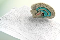 Mock-up brain on diagram background Royalty Free Stock Photos