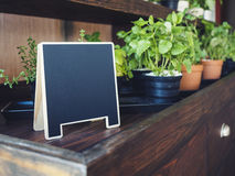 Mock up Chalkboard stand with organic herb plants on shelf Royalty Free Stock Photography