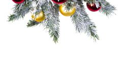 Mock up with Christmas Tree. Christmas or New Year Border. Winter flat lay. Christmas Toy Balls royalty free stock photo