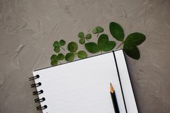 Mock-up with clean notepad and clover leaves, top view. Flat lay composition of blank notebook and pencil, copy space stock photography