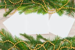 Mock up, with fir branches, christmas, new year Royalty Free Stock Photo