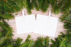 Mock up, with fir branches, christmas, new year Royalty Free Stock Photos