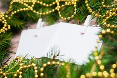 Mock up, with fir branches, christmas, new year Stock Photo