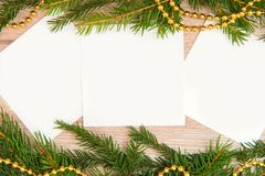 Mock up, with fir branches, christmas, new year Royalty Free Stock Image
