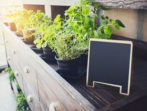 Mock up Menu Chalkboard stand with organic herb plants. Display on Wooden table morning light Royalty Free Stock Image