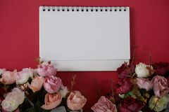 Mock-up white paper with space for text or picture on red background and flower royalty free stock image