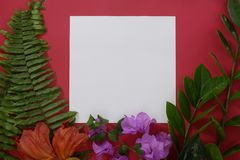 Mock-up white paper with space for text or picture on red background and tropical leaves and flowers royalty free stock photos