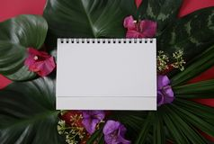 Mock-up white paper with space for text or picture on red background and tropical leaves and flowers royalty free stock photography