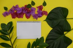 Mock-up white paper with space for text or picture on yellow background and tropical leaves and flowers stock photo