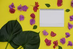 Mock-up white paper with space for text or picture on yellow background and tropical leaves and flowers stock photography